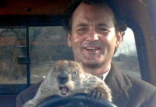 Groundhog-Driving-Phils